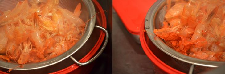 shrimpshells